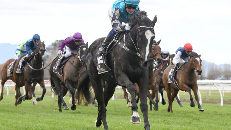 Exciting future tipped for promising filly